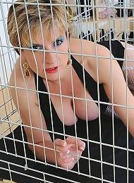 Caged cougar milf